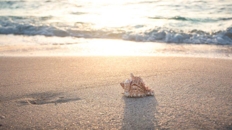Spiaggia di Ficocella a Palinuro