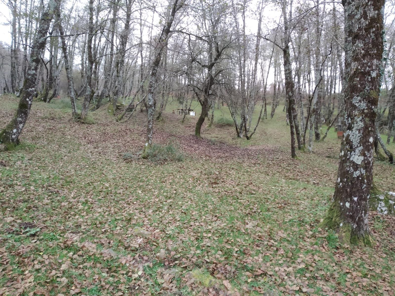 Il territorio di Cuccaro Vetere