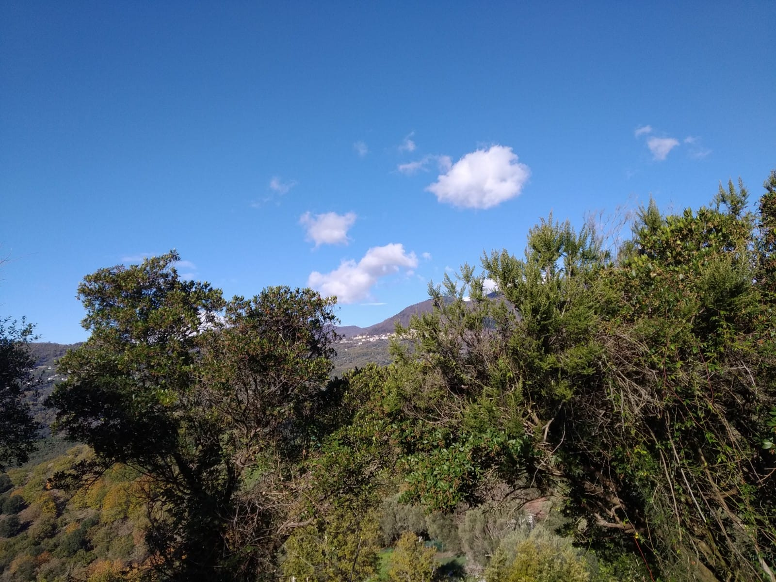 Il territorio di Montano Antilia